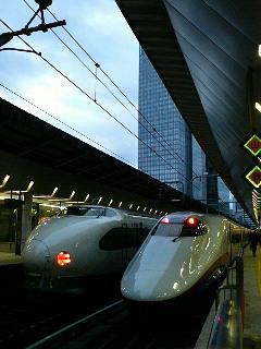 P1030069.jpg