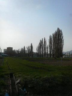 P1050106.jpg
