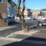 駐車場からにじみ出る欲、「よくばり駐車場」